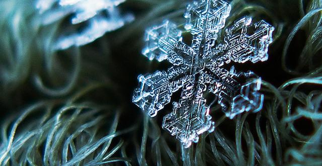 Macro-Snowflake-1