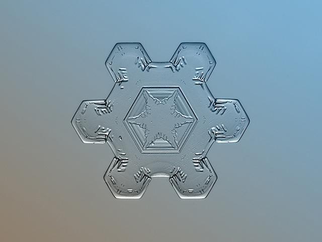 Macro-Snowflake-11