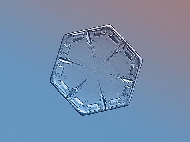 Macro-Snowflake-13