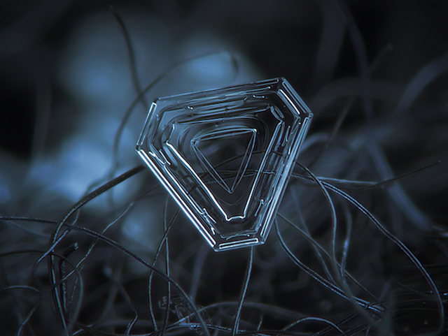 Macro-Snowflake-15