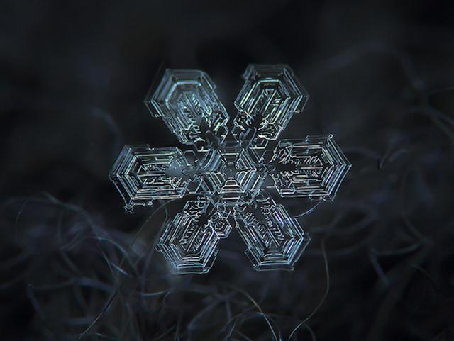 Macro-Snowflake-16