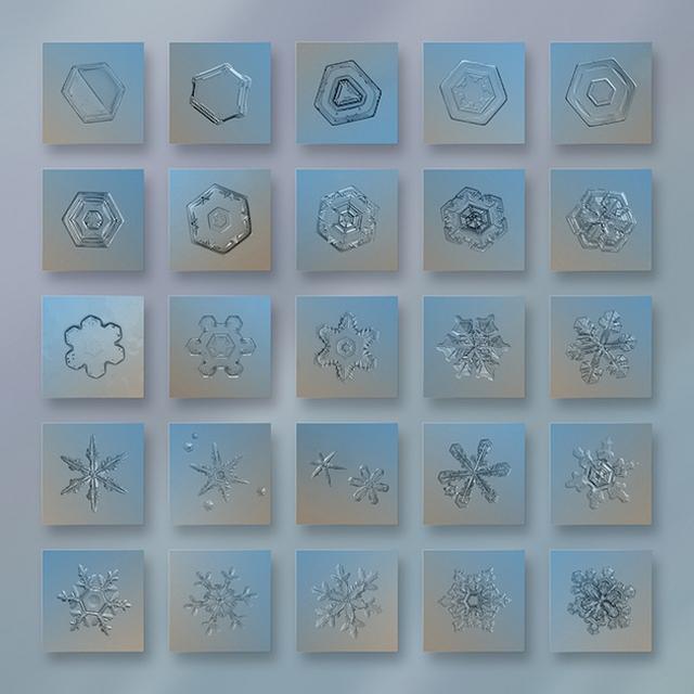 Macro-Snowflake-17