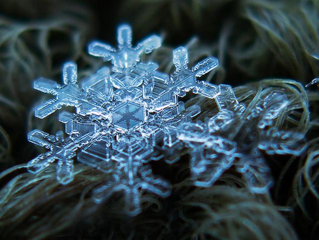 Macro-Snowflake-2