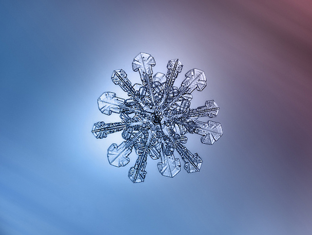 Macro-Snowflake-3
