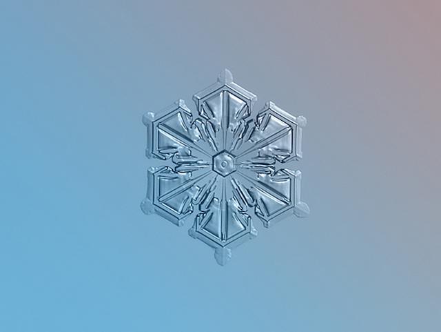 Macro-Snowflake-5