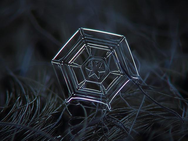 Macro-Snowflake-8
