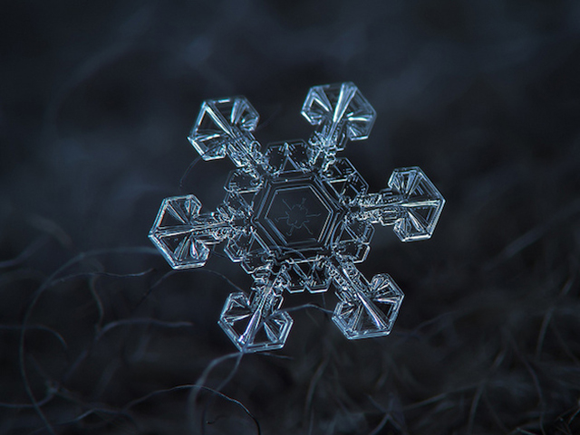 Macro-Snowflake-9