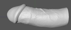 Voici la modélisation 3D d'un futur sextoy, la ressemblance avec la réalité est bluffante !