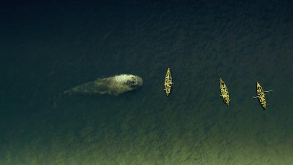 au coeur de l ocean critique film