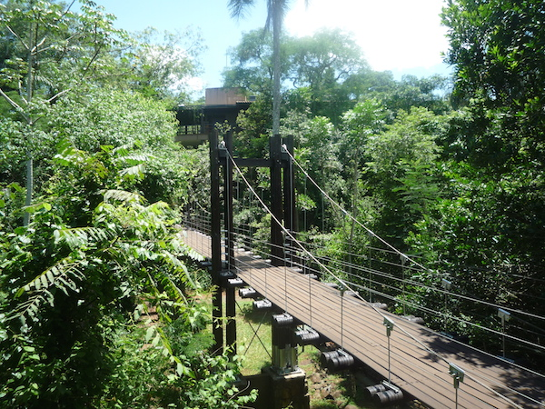 voyage bresil pont suspendu