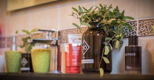 Vitamin Plant plante homme salle de bain