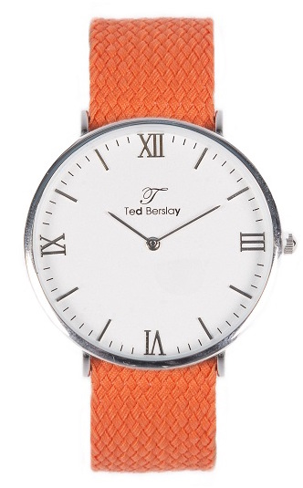 montre homme pas cher ted berslay