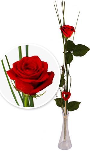 offrir des fleurs est toujours une bonne id e gentleman moderne. Black Bedroom Furniture Sets. Home Design Ideas