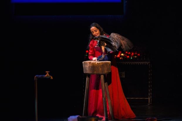 Le testament de Marie critique theatre 2