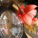 montre swatch collection printemps été 2016 Passe partout - collection Metallix