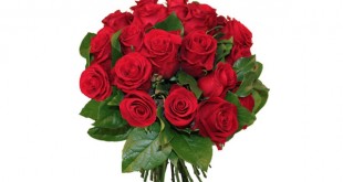 offrir fleurs saint valentin