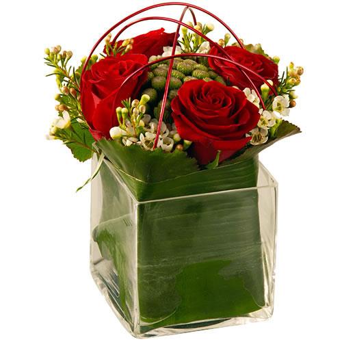 offrir fleurs saint valentin rose rouge gentleman moderne. Black Bedroom Furniture Sets. Home Design Ideas