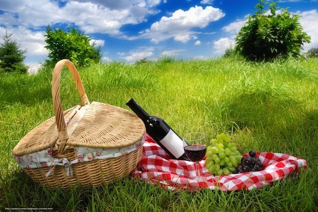 Le printemps se fête avec des vins réjouissants