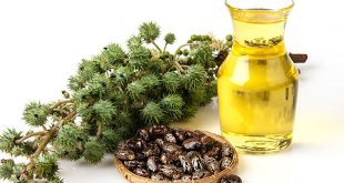 huile de ricin naturel quelle est la meilleure pure