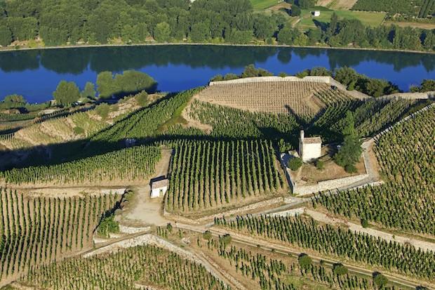 biowine avis vin bio vallee du rhone