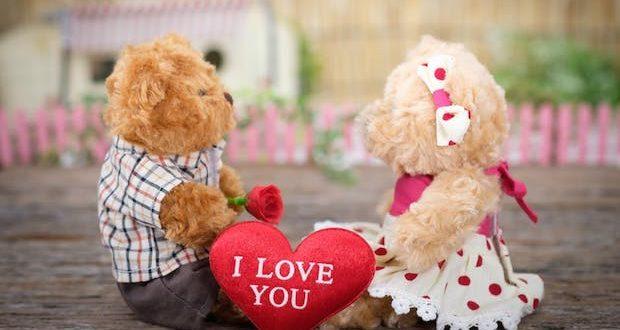 saint valentin livraison fleurs roses