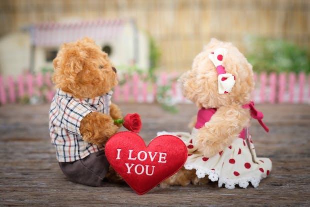 Pour la Saint-Valentin, faites livrer des roses !