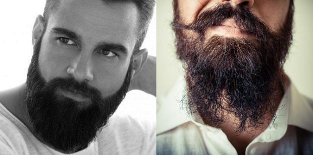 barbe bien entretenu soigne comparatif