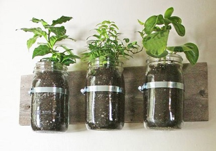 plantes aromatiques DIY cuisine interieur