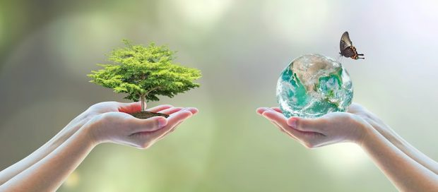 blog nature environnement ecologie