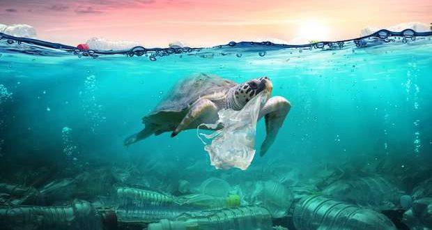 comment reduire consommation de plastique solution