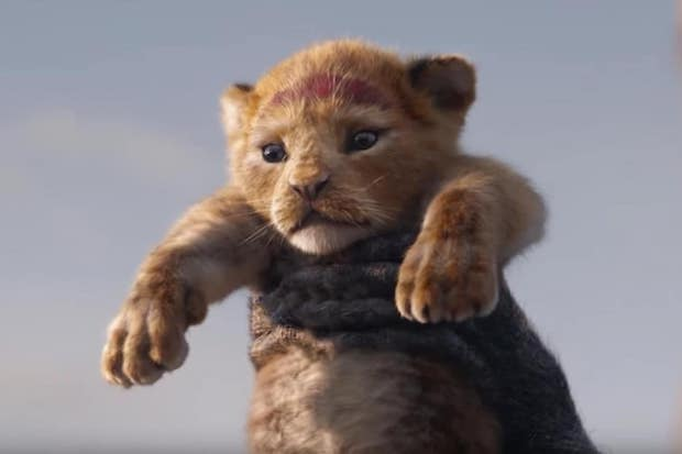 critique le roi lion 2019 simba