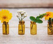 Quelles huiles essentielles pour résister à l'arrivée du froid ?