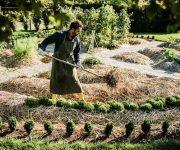 Les meilleurs livres de permaculture, le top 10 !
