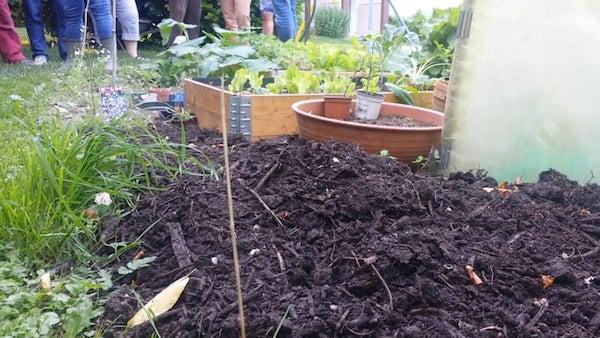comment-creer-premier-potager-travailler-terre-terreau-engrais
