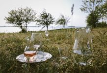 quel vin rose boire choisir