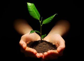 idee cadeaux ecolo ecologie vegan ecoresponsable zero dechet