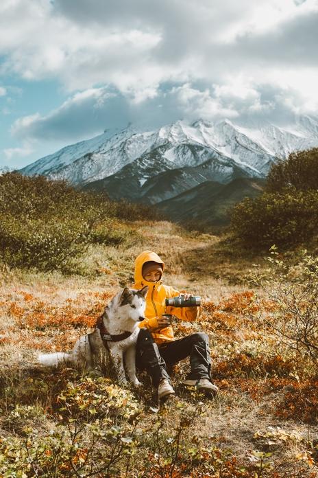 dressage chien chiot accessoire objet gadget cliker sifflet aide facile chiot difficile conseil livre sport canin canicross vtt traction
