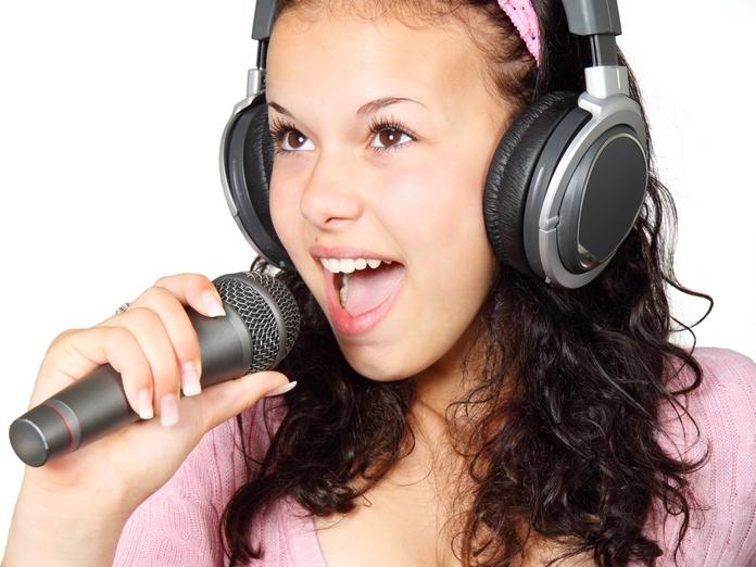 accessoire musique musicien micro karaoke professionnel idee cadeau pas cher chant