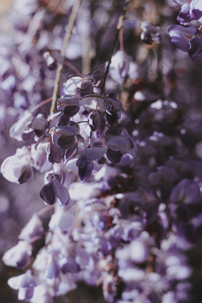 fleur artificielle plante verte interieur