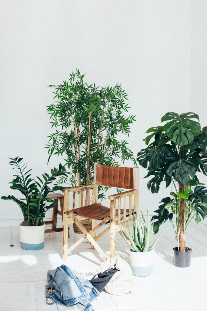 plante verte haute moyenne pot artificielle interieur