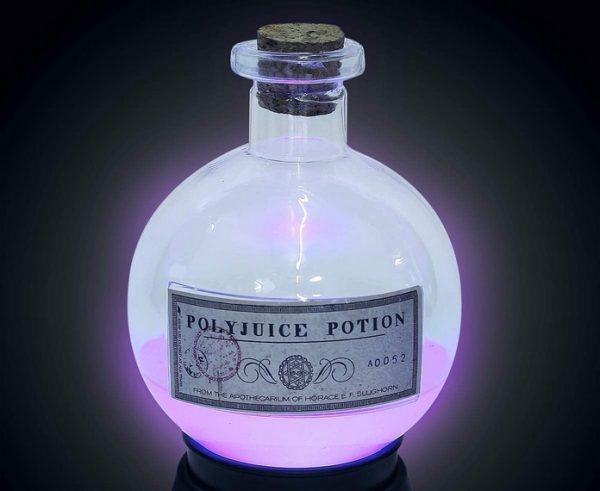 idee goodie cadeau harry potter decoration