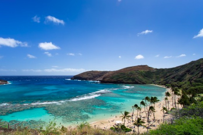 houblonnage iles hawaii