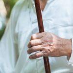 instrument musique chinois asiatique ehru violon