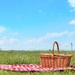 paniers picnic sac isoterme pic nique