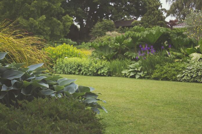 comment-entretenir-des-plantes-pendant-les-vacances-confier-son-jardin