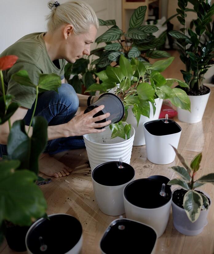 comment-entretenir-des-plantes-pendant-les-vacances-pots-réserve-eau