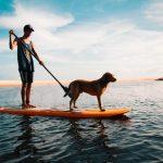 comment-rafraichir-son-chien-paddle