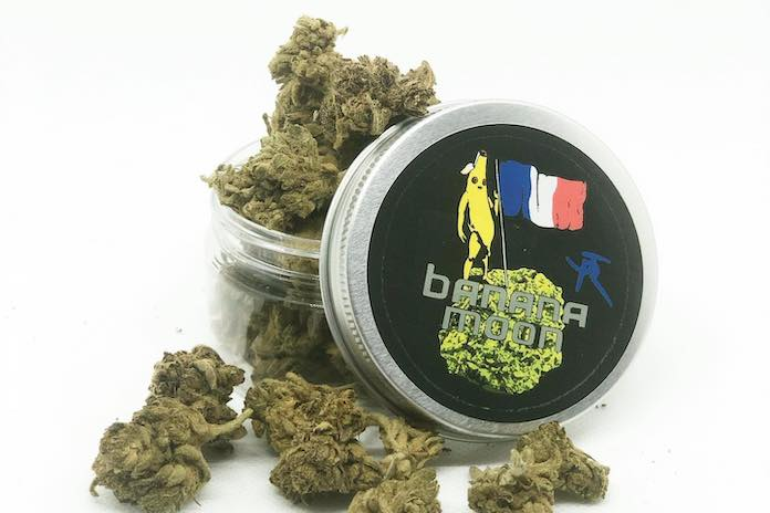 kuch cbd made in france